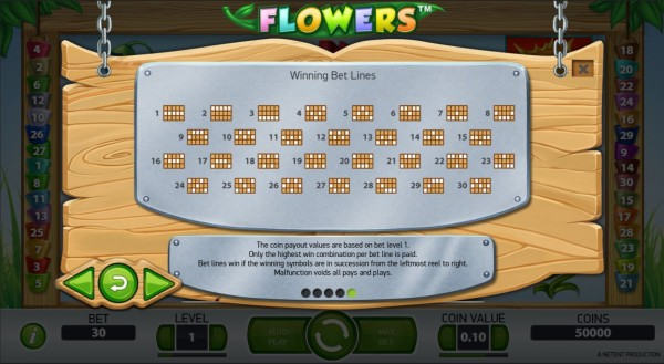 Flowers Paylines